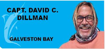 Capt. David C. Dillman